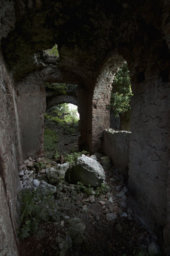 ruins antica monterano trees nature lost city